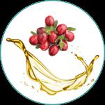 Yummys-Zutaten7